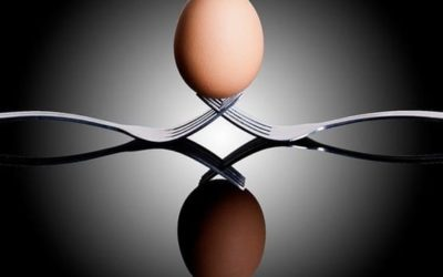 Work/ Life Balance: We Need the Eggs