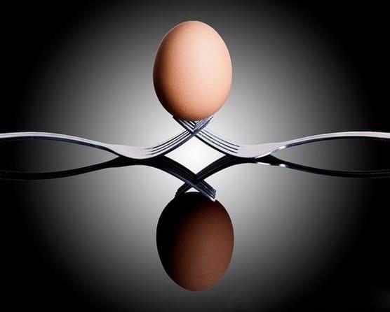 Work/ Life Balance: We Need the Eggs
